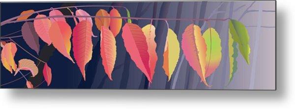 Fall Leaves Metal Print by Marian Federspiel