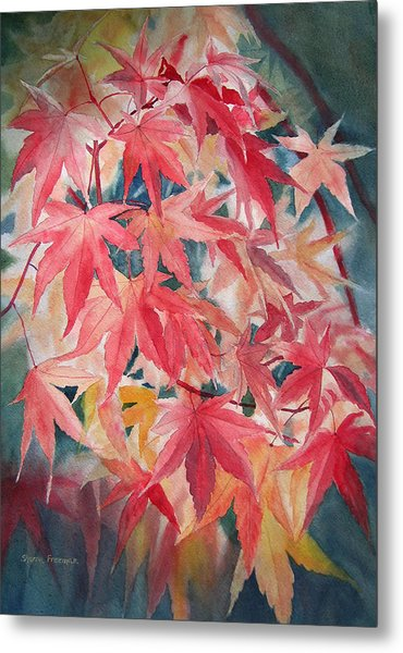 Fall Maple Leaves Metal Print by Sharon Freeman