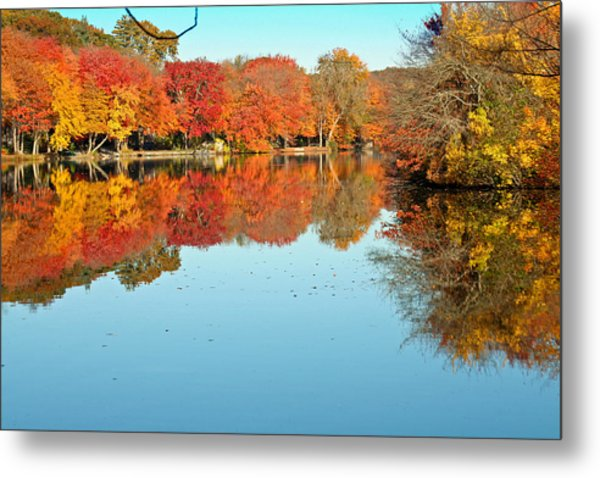 Fall Morning In East Lyme 1 Metal Print by Gerald Mitchell