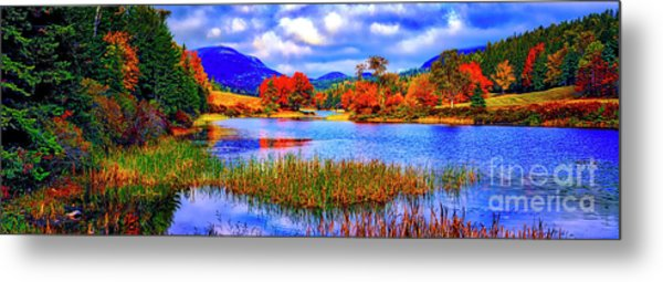 Fall On Long Pond Acadia National Park Maine  Metal Print