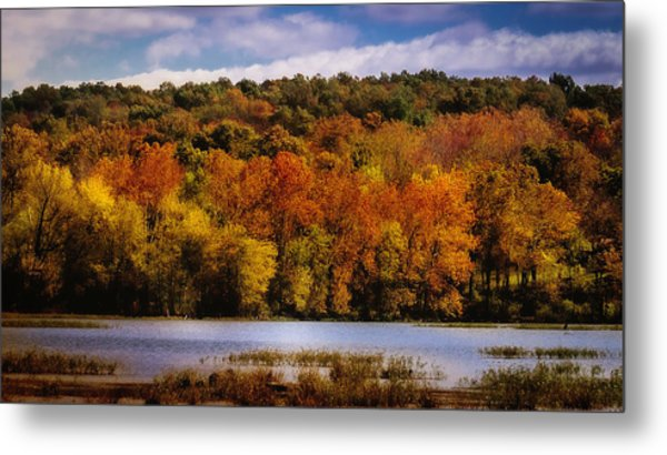 Fall On Springfield Lake Metal Print