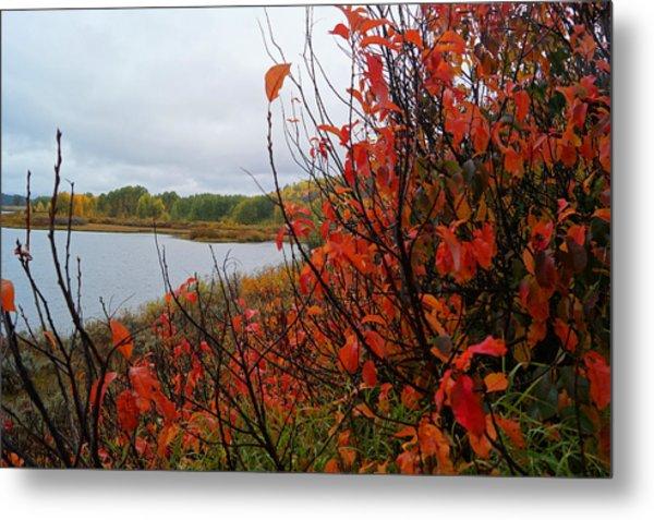 Fall On The Lake Metal Print
