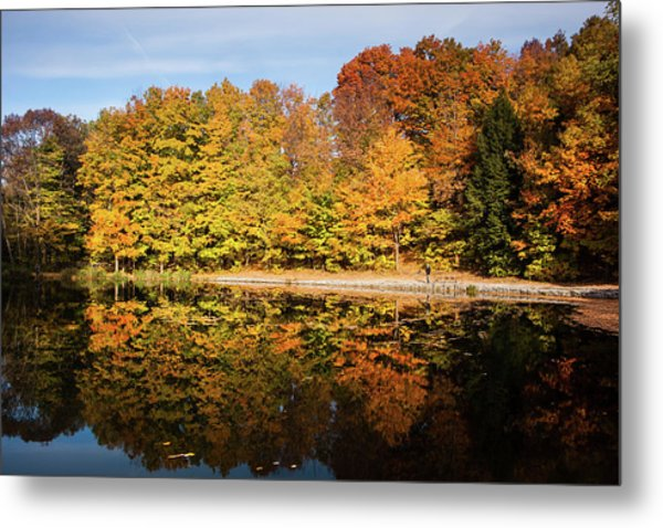 Fall Ontario Forest Reflecting In Pond  Metal Print