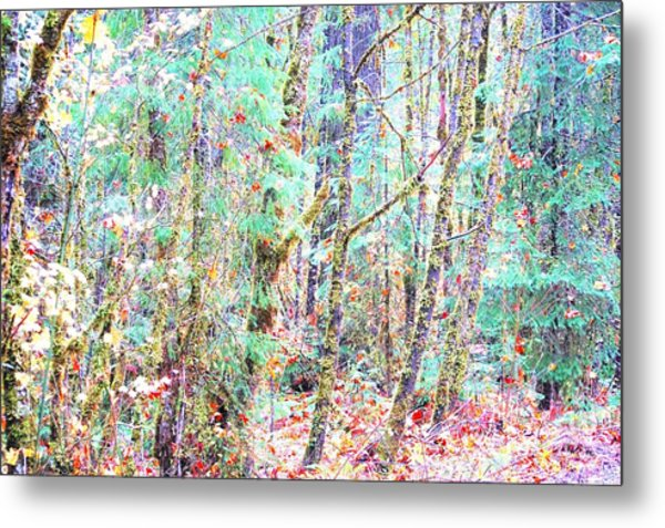Fall Oregon Forest Metal Print