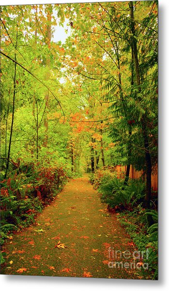 Fall Path Too Metal Print