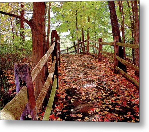 Fall Pathway Metal Print