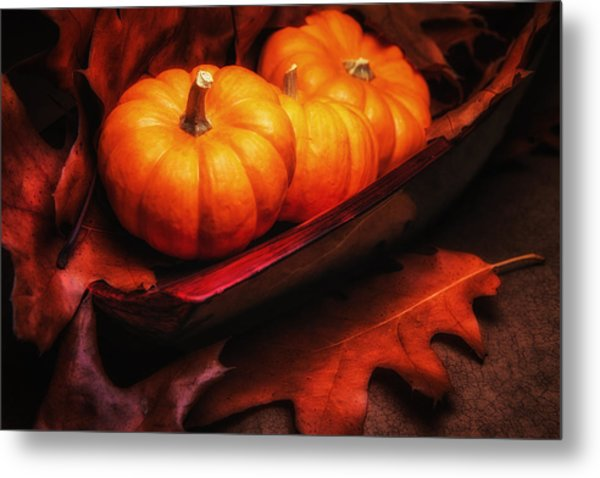 Fall Pumpkins Still Life Metal Print