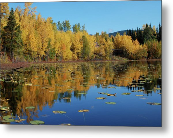 Fall Reflection Metal Print