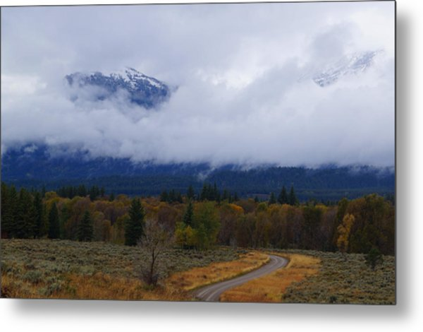 Metal Print featuring the photograph Fall Season's Last Stand by Broderick Delaney