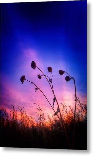 Fall Sunrise Metal Print by Tim Abshire