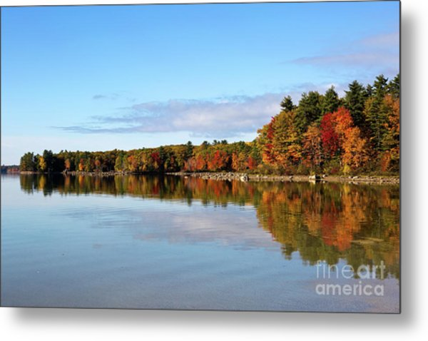 Fall Tree Reflections Lake Sabago Maine Metal Print