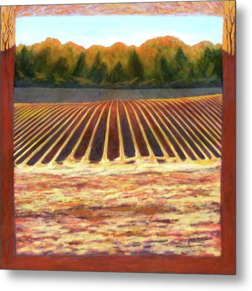 Metal Print featuring the painting Fallow Field by Jeanette Jarmon