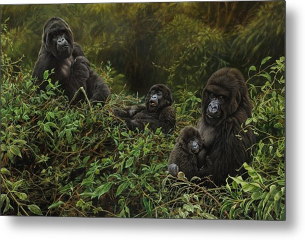 Family Of Gorillas Metal Print