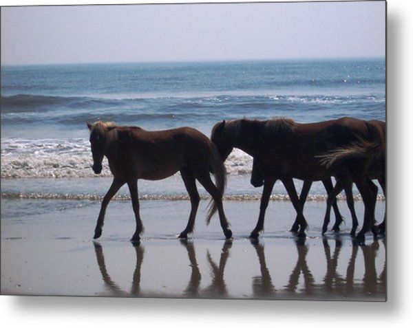 Family Stroll Metal Print by James and Vickie Rankin