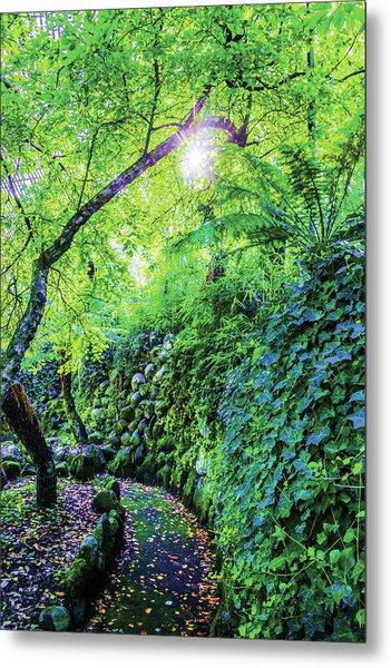 Fantasy Garden  Metal Print