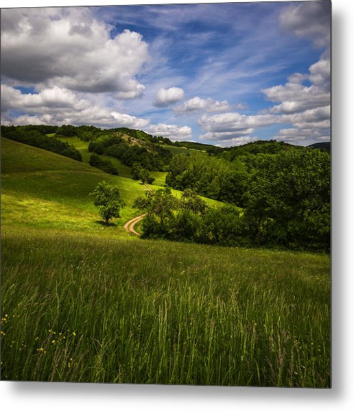 Far And Away Metal Print