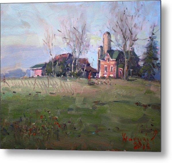Farm In Georgetown Metal Print