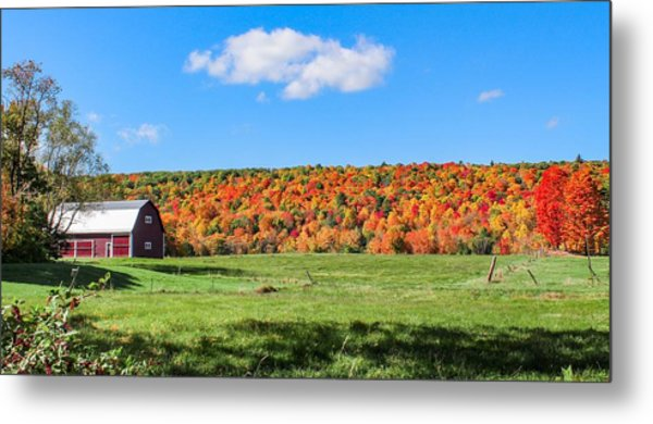 Farm View From Russellville Road Metal Print