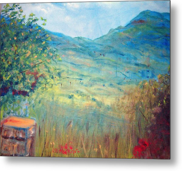 Farm View Near Davis Mountains Metal Print by Richalyn Marquez