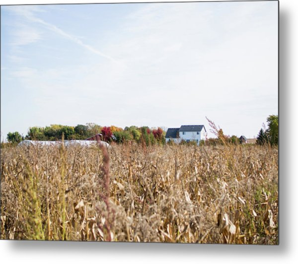 Metal Print featuring the photograph Farm by Whitney Leigh Carlson
