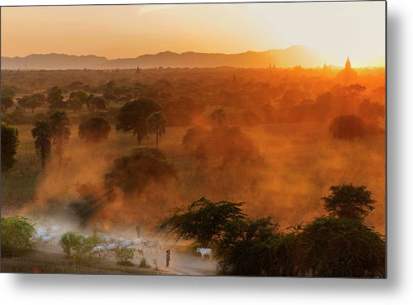 Metal Print featuring the photograph Farmer Returning To Village In The Evening by Pradeep Raja Prints