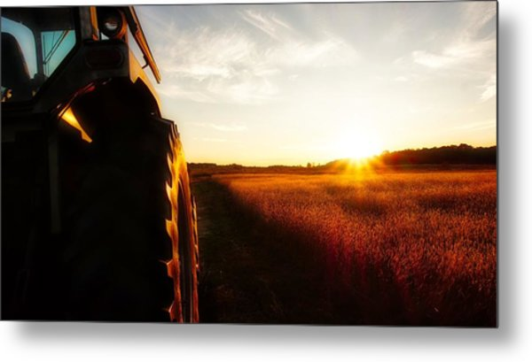 Farming Until Sunset Metal Print