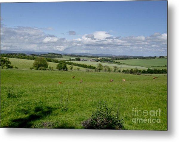 Farmland In Beecraigs. Metal Print