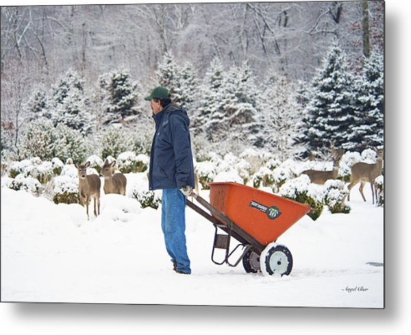 Metal Print featuring the photograph Farmlife by Angel Cher