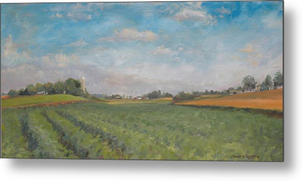 Farms And Fields Metal Print by Sandra Quintus