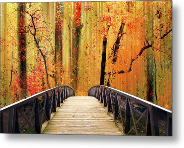Metal Print featuring the photograph Forest Fantasia by Jessica Jenney