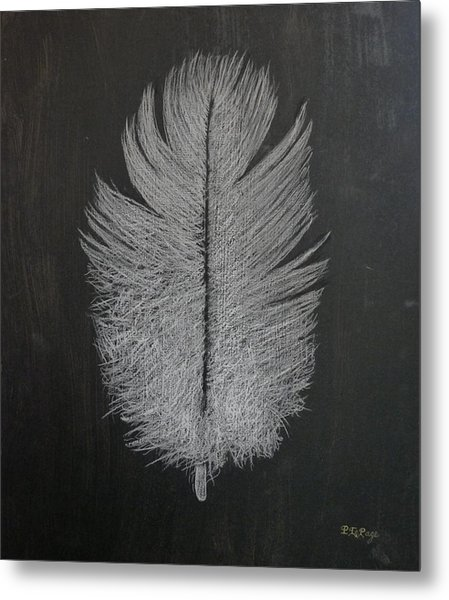 Feather 1 Metal Print