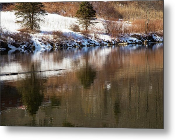 February Reflections Metal Print