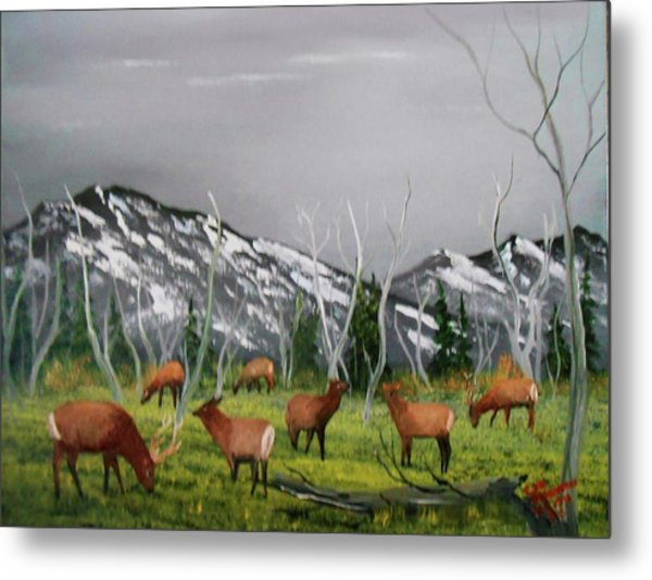 Feeding Elk Metal Print