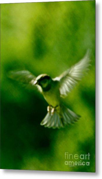Feeling Free As A Bird Wall Art Print Metal Print