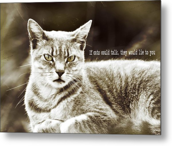 Feline Moment Quote Metal Print by JAMART Photography