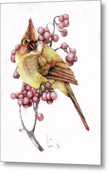 Female Cardinal Metal Print by Preston Shupp