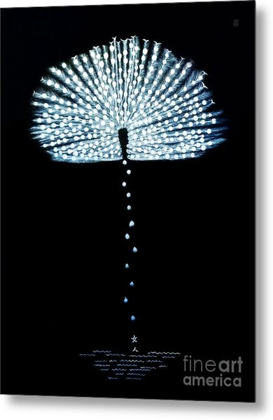 Female Feather Metal Print