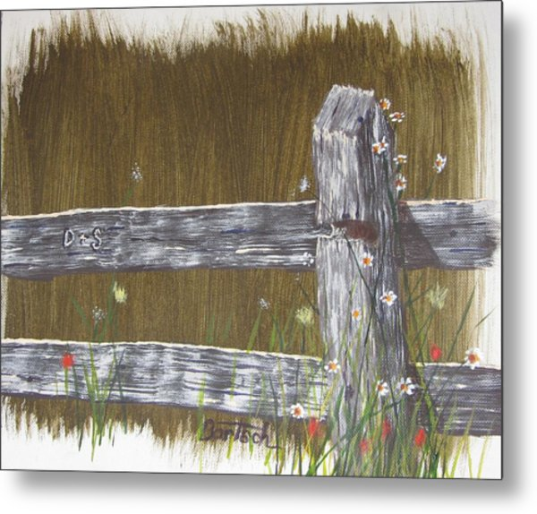 Fence D And S Metal Print