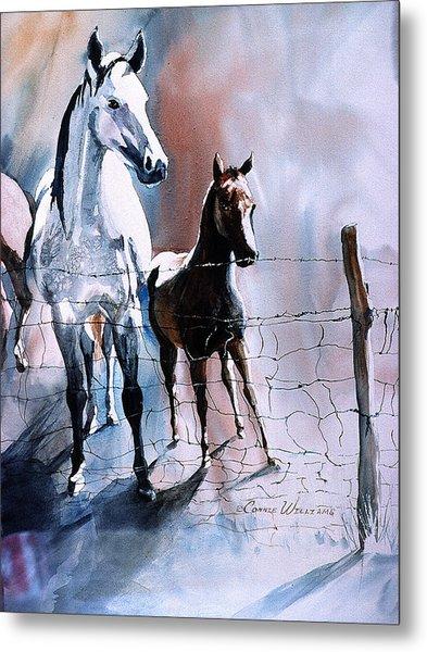 Fence Line Horses Metal Print