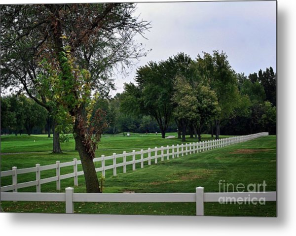 Fence On The Wooded Green Metal Print