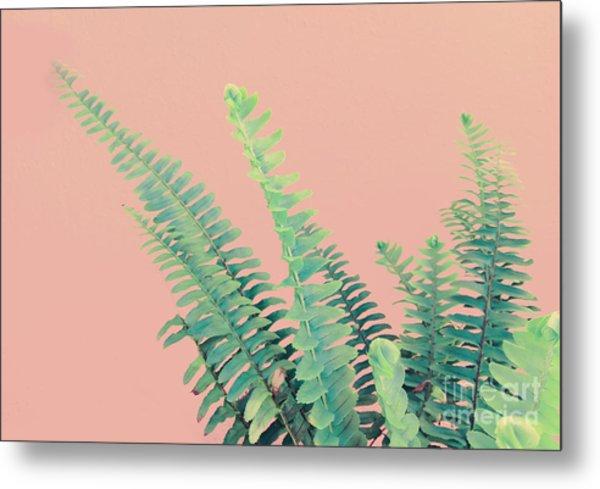 Ferns On Pink Metal Print