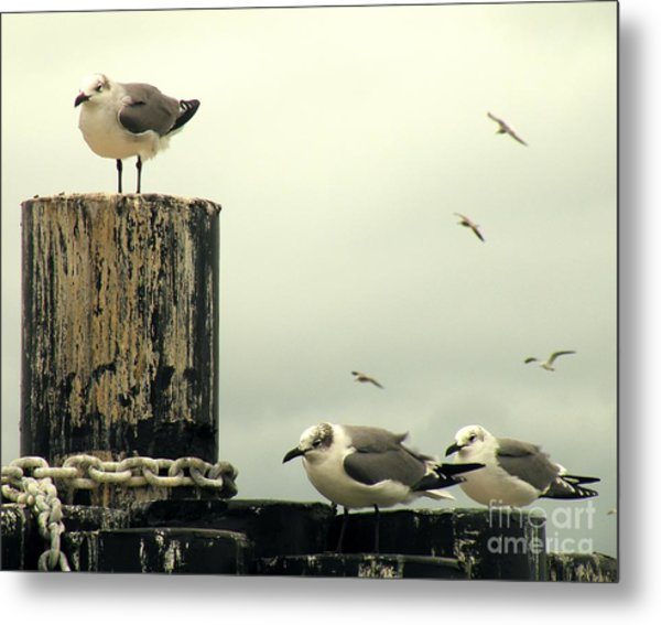 Ferry Hypnosis Metal Print