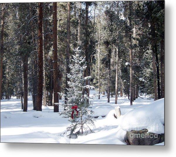 Festive Forest Metal Print