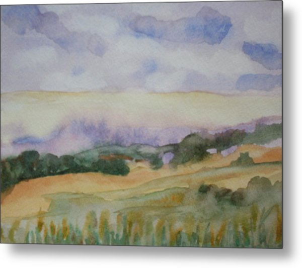 Field And Sky 1 Metal Print by Warren Thompson