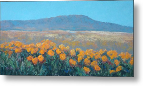 Field Of Dreams Metal Print by Debra Mickelson