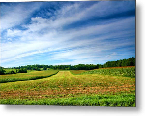 Field Of Dreams Two Metal Print