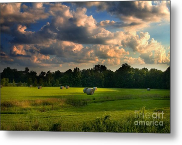 Field Of Grace Metal Print