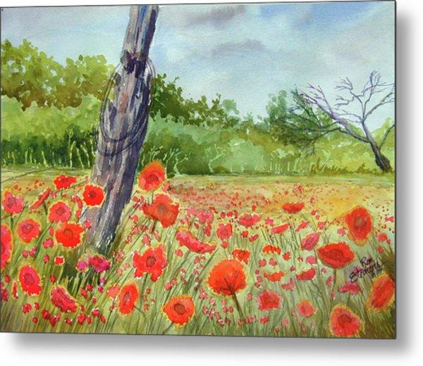 Field Of Red Flowers Metal Print