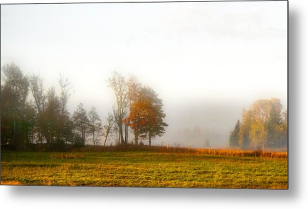 Field Of The Morn Metal Print