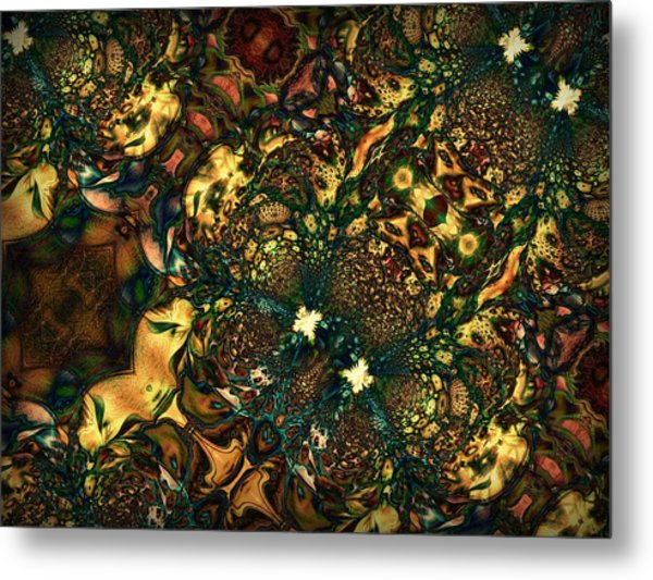 Field Of View Metal Print by Talasan Nicholson